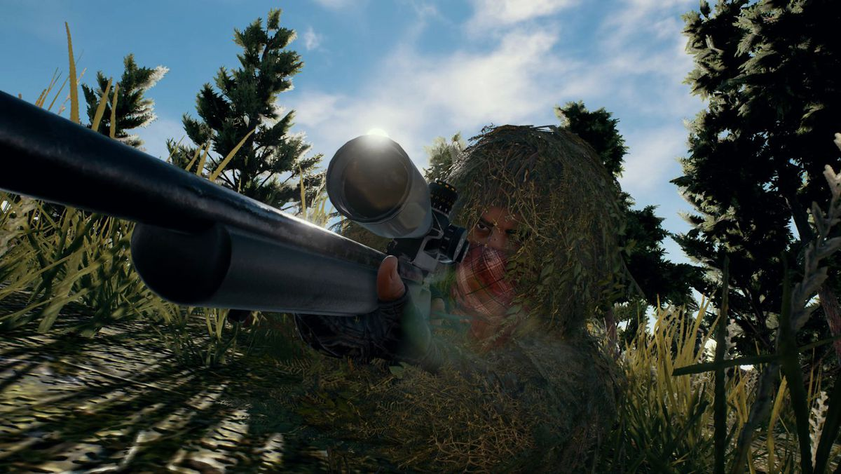 Playerunknown's Battlegrounds Cheaters
